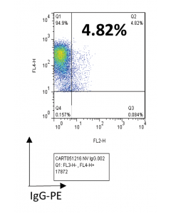 Non-transduced T-cells, healthy donor
