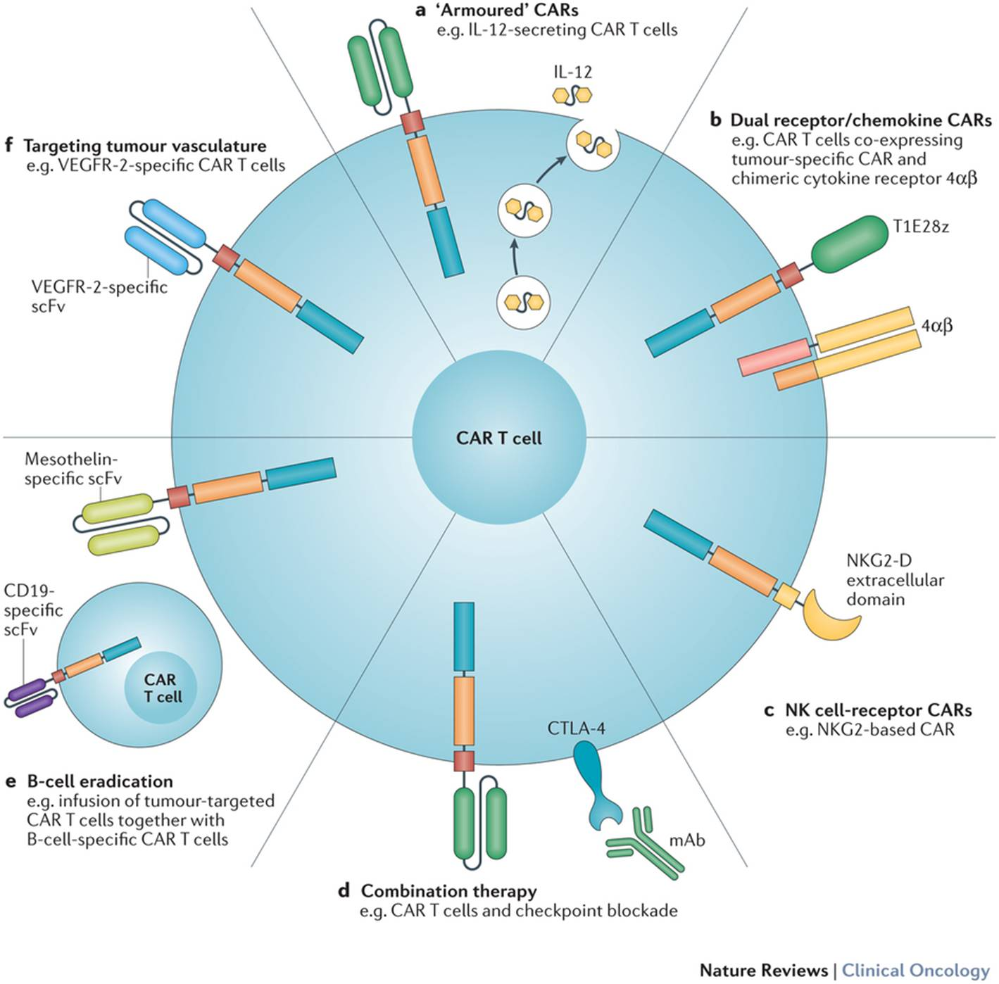 CAR-T-therapies_07e88780fbeda3c85461762a63becd21