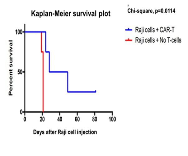 Animal research case study depicting survival curves
